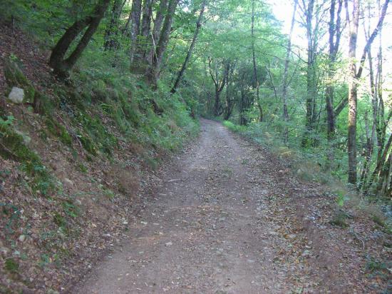 PARCOURS LA MADICOISE 20 KM